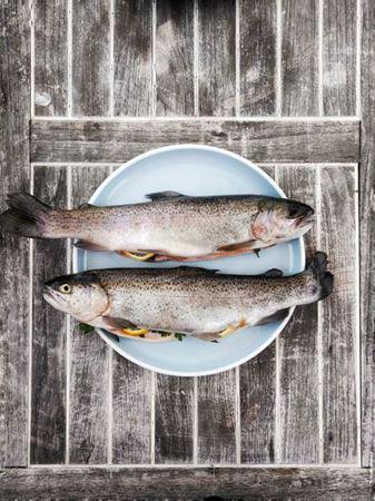 Billede til varegruppe Fisk